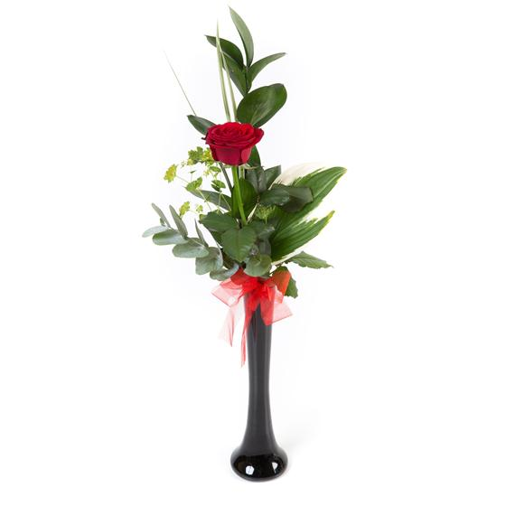 A Single Red Naomi Rose in a Vase